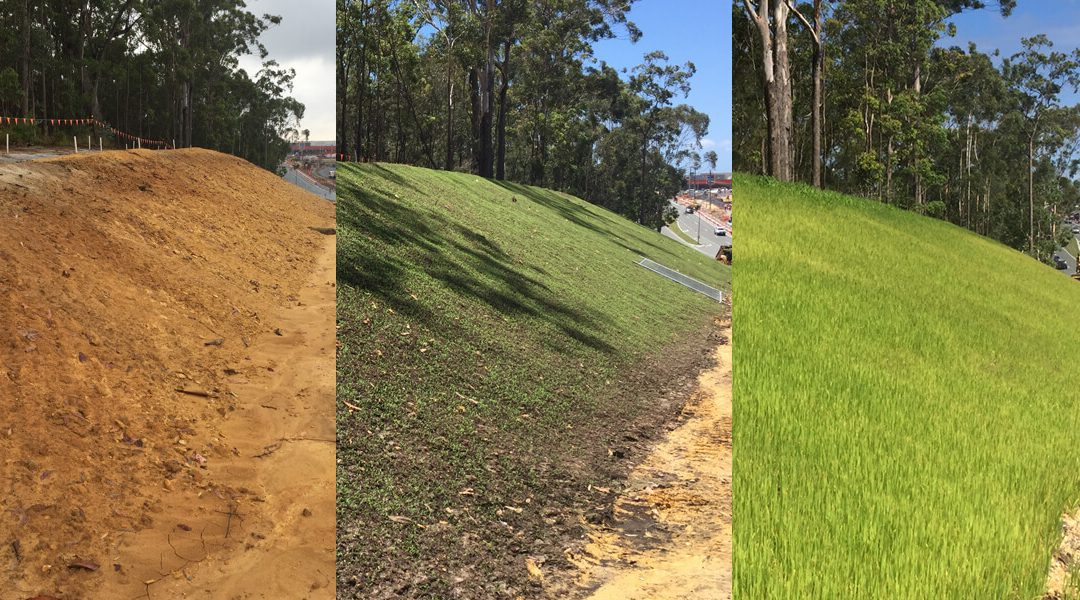 Gold Coast sees green with Hydroganics