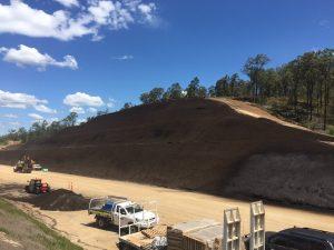 Toowoomba Second Range Crossing revegetation success story