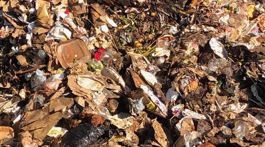 Demand grows for compostable plastics