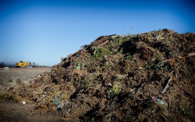 NuGrow celebrates significant achievements for International Compost Awareness Week